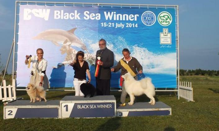 Erik on the dog show-19 july 2014